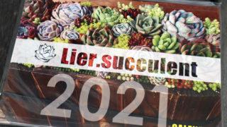 Lierカレンダーセット2021