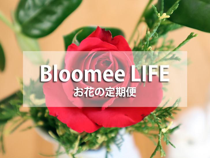 <Bloomee LIFE>
